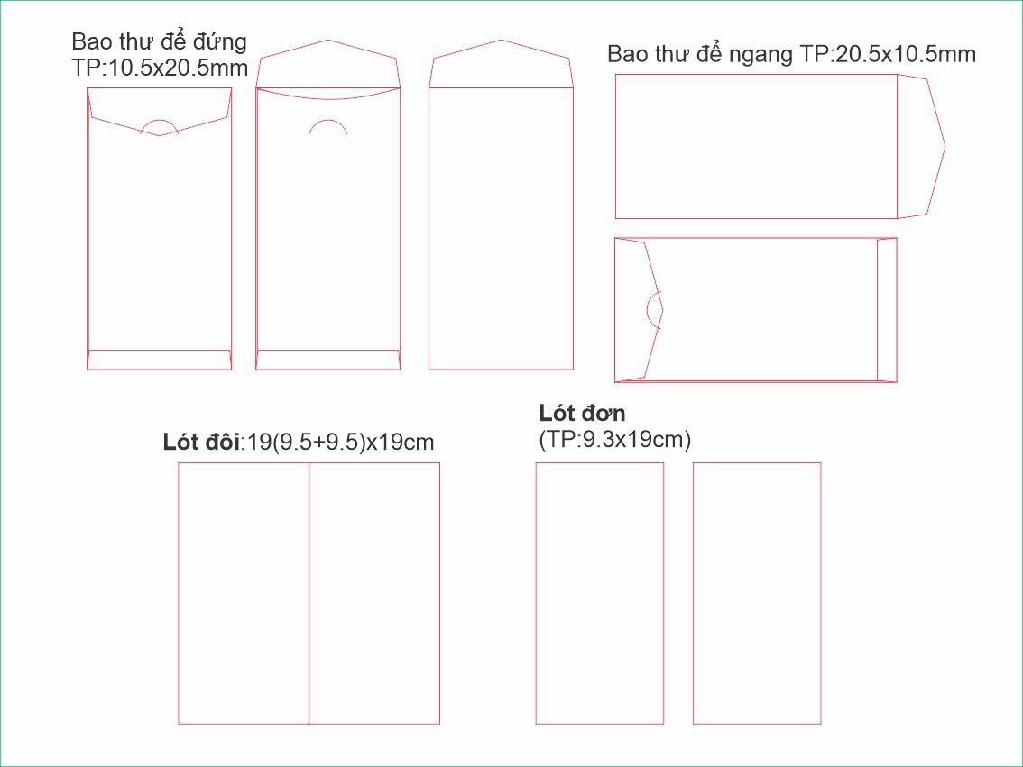 D3-Bao thu Dai tui dung-Kho TP105x205mm-cung co phoi 2109